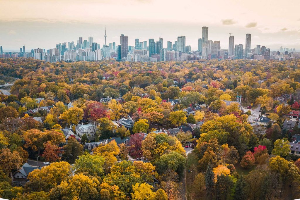 Aerial Photo of Toronto City from residential to high towers in the fall